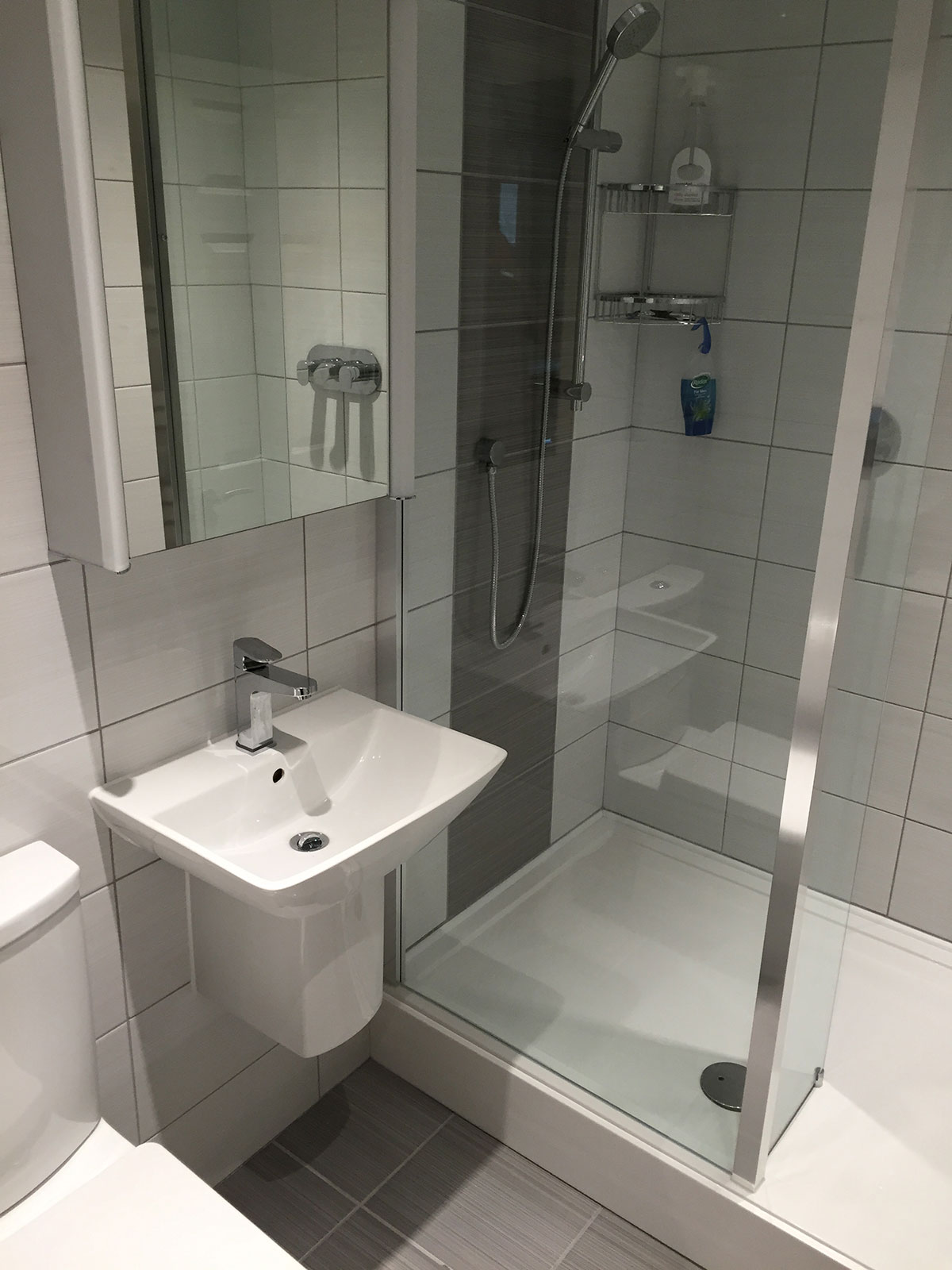 Shower & sink unit